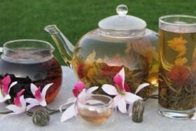 Kvetoucí čaj